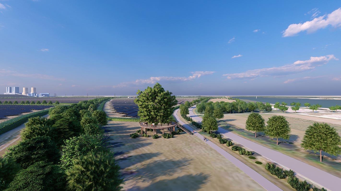 Solarpark  - Solitärbaum